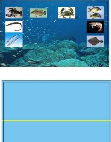 海产品水产品名片图片