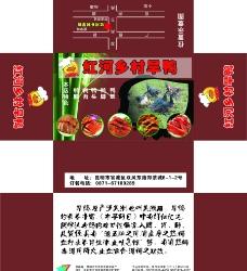 红河乡村旱鸭图片