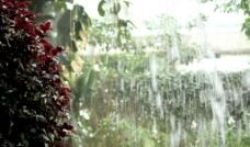 郑州植物园水帘图片