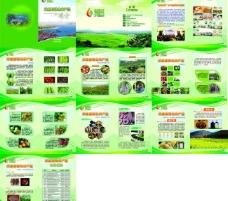 米易农产品画册图片