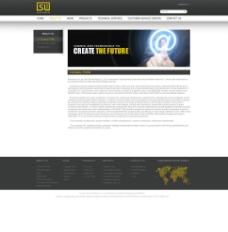 电子网站图片