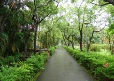 台湾园林风光图片