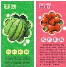 水果底纹海报模板图片