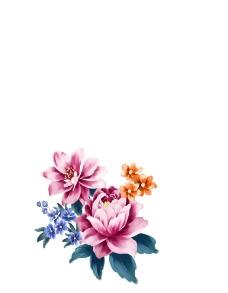 手绘花图片
