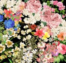 五彩缤纷 手绘花朵图片