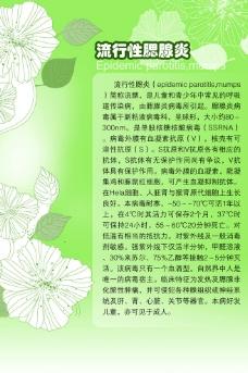流行性腮腺炎简介图片