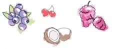 蓝莓 椰子 樱桃图片