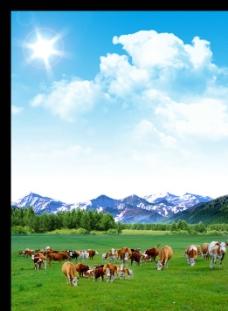 牛群海报图片