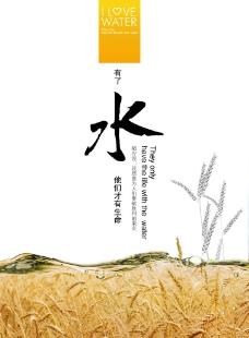 水稻 环保展板图片