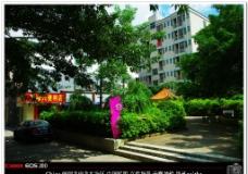 城市村落 花园楼景图片