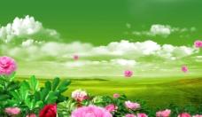 盛开的花朵广告素材图片