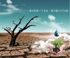 一滴水就是一个生命,请不要让它白流