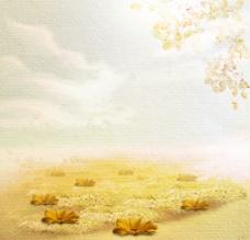 秋菊满地图片