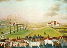 康奈尔大学的农场图片