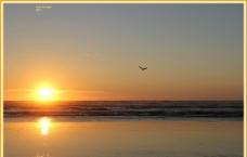 落日夕阳海图片