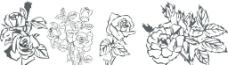 花朵矢量图图片