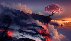 火山樱花树图片