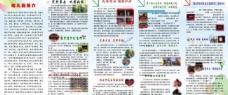 幼儿园宣传折页图片