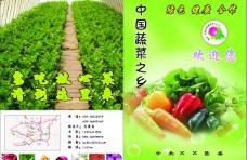 蔬菜封面图片