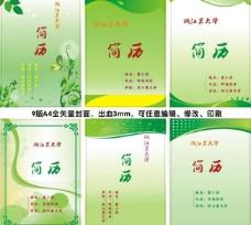 简历 封面 绿色简历图片