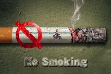 禁止吸烟(No Smoking)