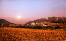 魅力侗寨 黄道瓦寨图片