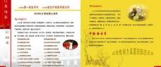 茶艺招生画册内页图片