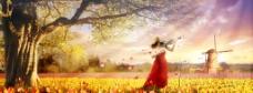 阳光紫金花秋天背景图片
