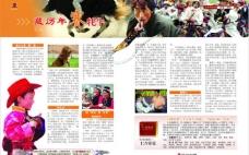 藏历年赛牦牛图片