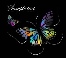 蝴蝶花纹背景矢量图片