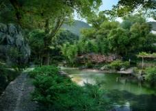河边树林度假休闲环境图片