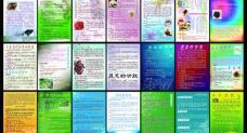 宣传画册单页图片