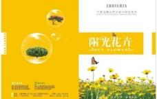 画册封面 字体 设计图片
