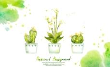 水彩图案与盆里的花卉图片