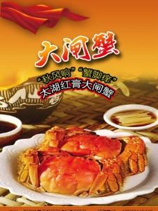 太湖大闸蟹图片