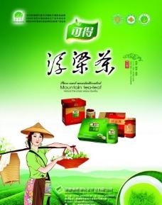 浮梁茶图片