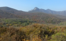 五乳岭秋色图片