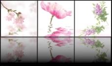 花朵倒影三联画图片