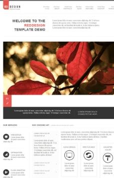 鲜花网站模板下载图片