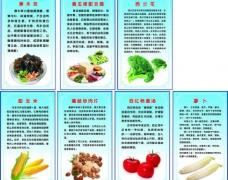 蔬菜展板图片