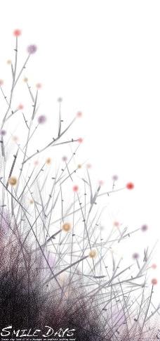 抽象植物图案图片