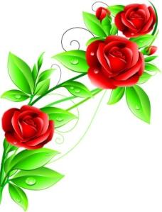 玫瑰花艺术矢量素材