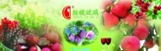 杨梅酒图片