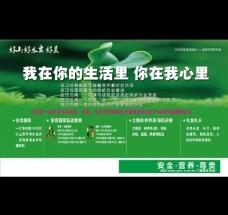 绿色蔬菜展板设计图片