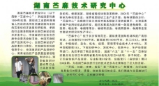 苎麻中心 研究所 展板图片