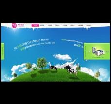 乳业网页模板 无代码图片