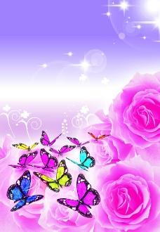 分层玫瑰蝴蝶