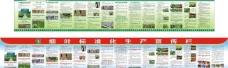 烟叶标准化生产宣传栏图片