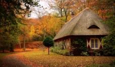 秋天的茅草屋图片