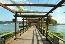 千岛湖桥图片